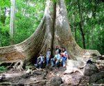 Tất tần tật một chuyến du hí đến vườn quốc gia Cát Tiên